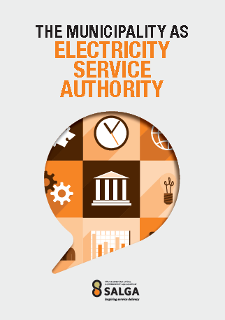 Councillor Induction Programme - Electricity Service Authority